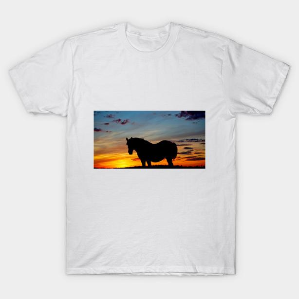 Sunset Horse Tshirt, NEW, on other items also