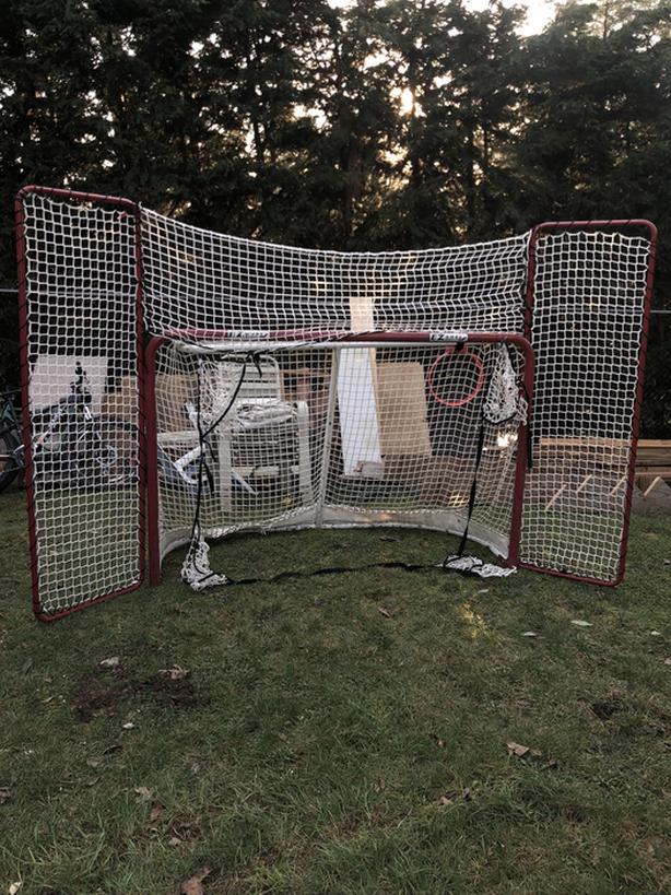 Log In needed $100 · Deluxe Hockey Net