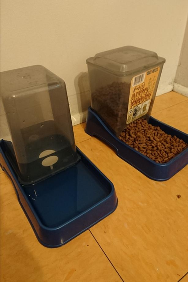 Cat or Dog auto food & water feeders