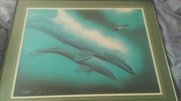  Log In needed $850 · Grey Wales and Baby Orca