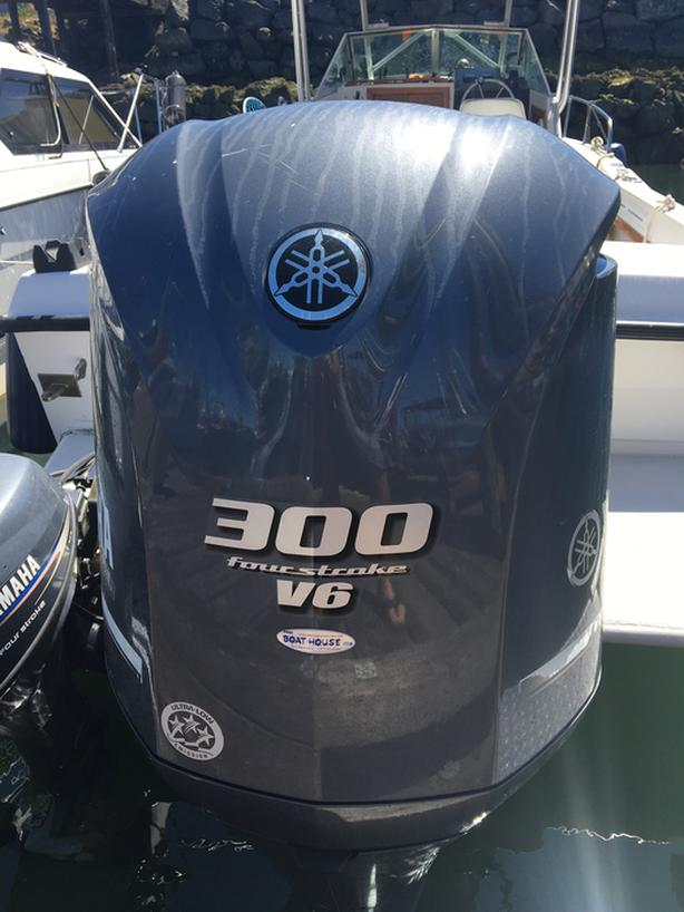 300 Yamaha outboard
