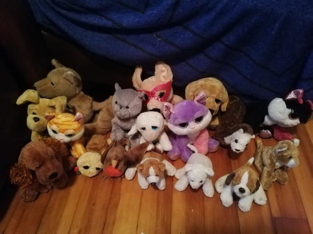 FOR TRADE: Stuffed animals