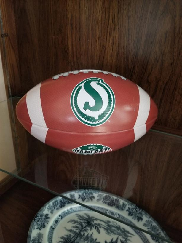 Rider Metal CFL Coin Bank