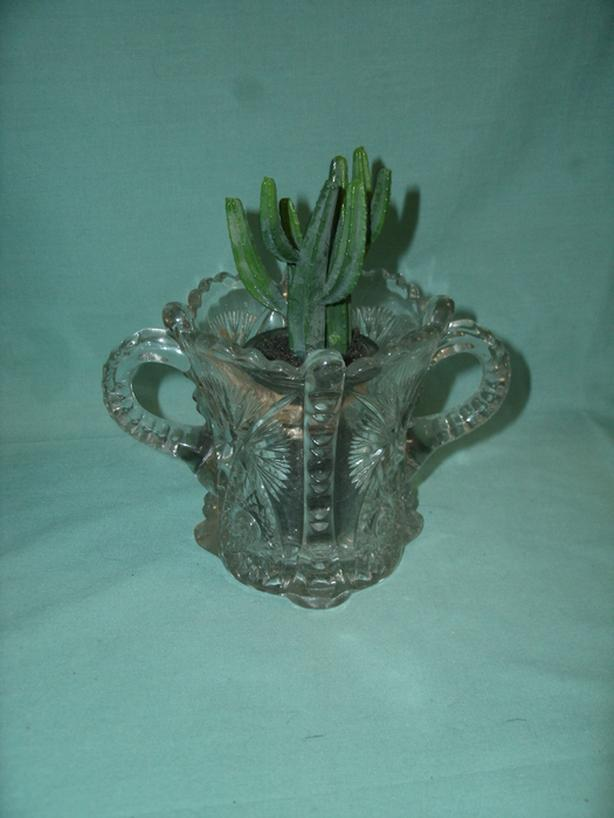 Cut Glass Sugar Bowl - Glass Flower Pot with Cactus - BUY 1 get 1 FREE