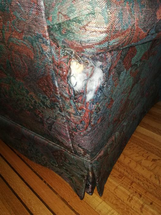 Couch And Loveseat Free West Shore Langford Colwood