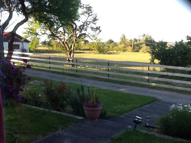 Self Board - Nice large paddocks and 4 acre pasture - NO