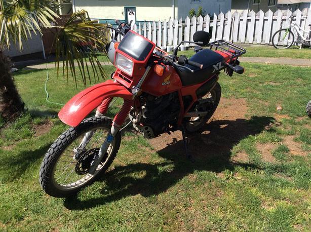1984 honda XL 600