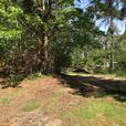 Beautiful 1 Acre Property in Chemainus