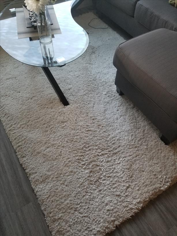 Large Cream Colored Rug- NEW!