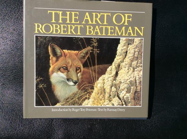 Art book.