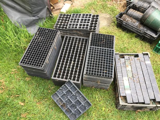 FREE: Assorted pots and trays
