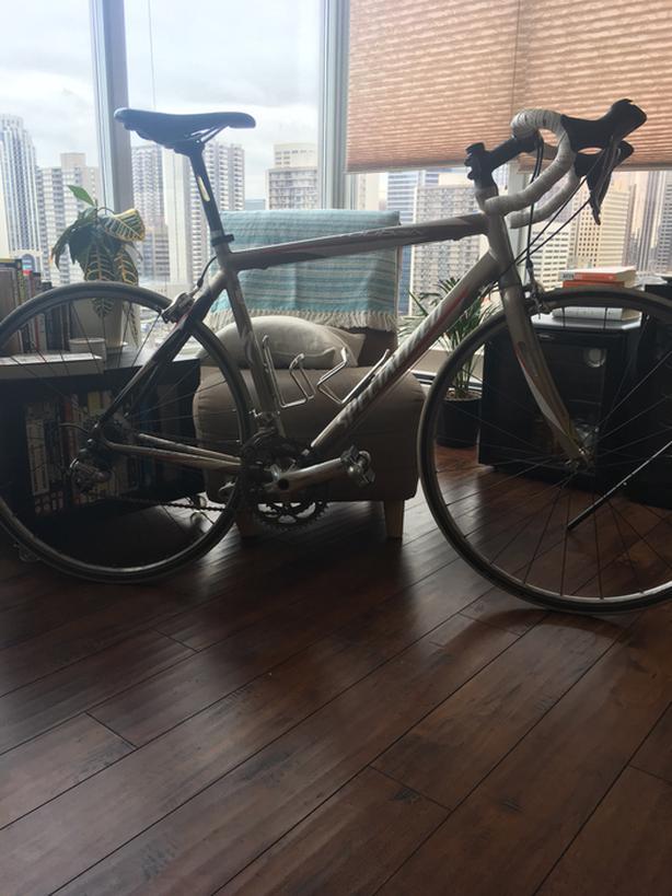 56 cm Specialized Roubaix Comp