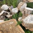 FOR TRADE: Firewood
