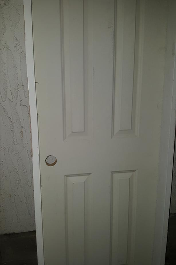 Hung Closet Door - 2' by 6.5'