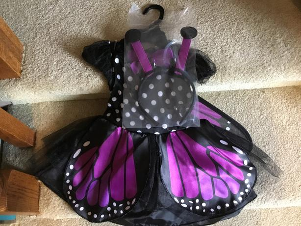 Butterfly Toddler costume - NEW