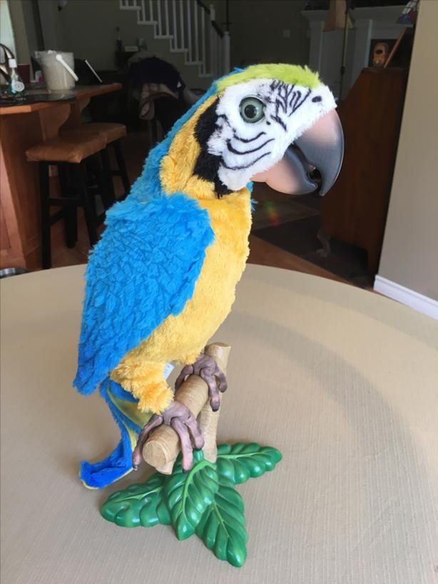 FurReal Squawkers McCaw Collectible