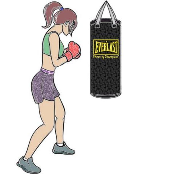 Everlast 40 lb Heavy Bag