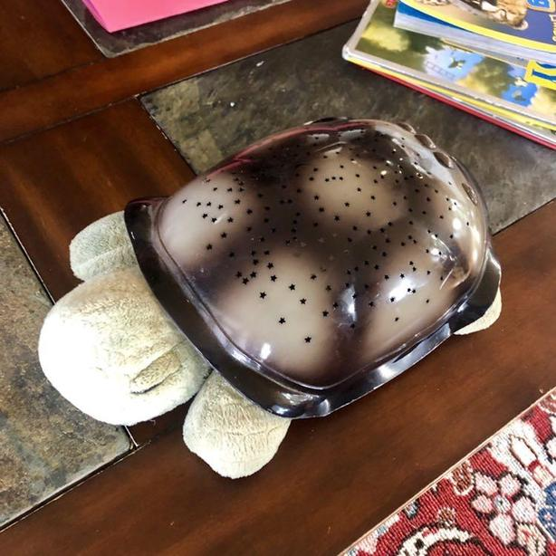 Twilight Turtle Classic Mocha.Cloud B Twilight Turtle Saanich Victoria