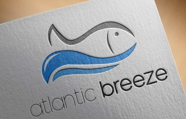 High Quality and Professional Logo Design