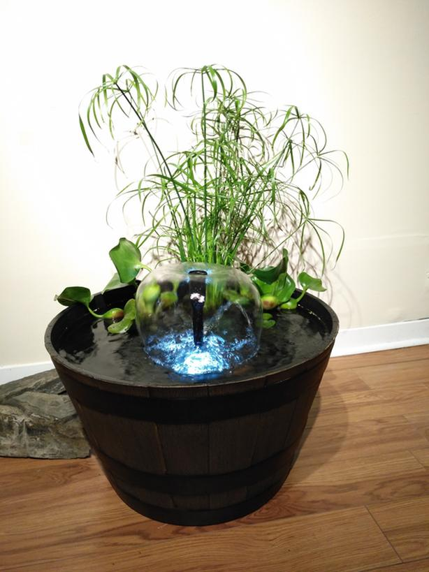 Patio / Garden Pond Kit + Live Plants