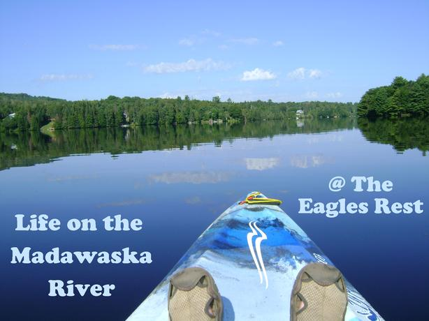 Weekly Pet friendly water front Cabin rental on the Madawaska River
