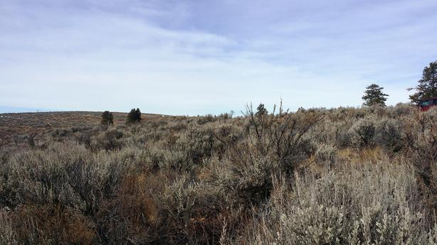 5.35  Acre Parcel on Badger Mountain