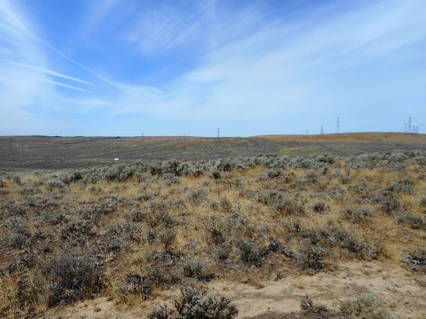 20 acre Parcel Near Banks Lake/Coulee City