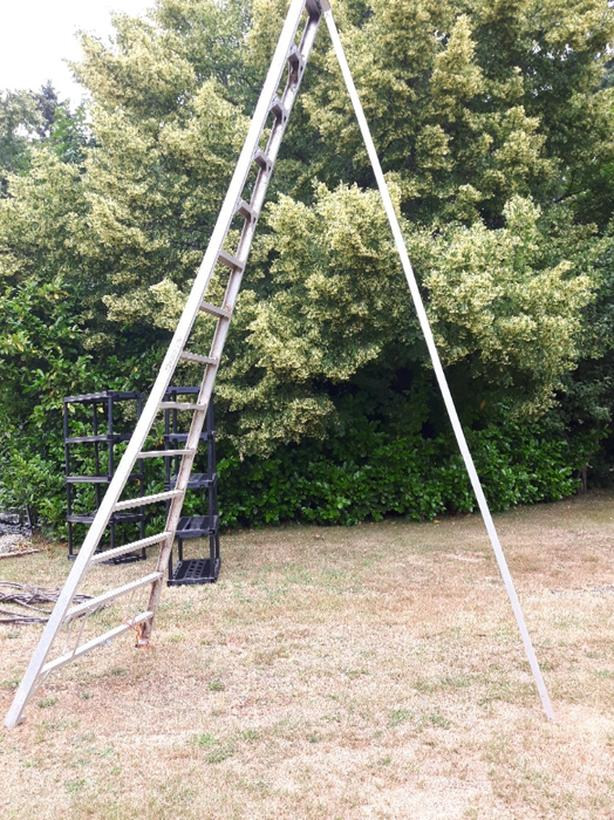 14ft orchard ladder Duncan, Cowichan