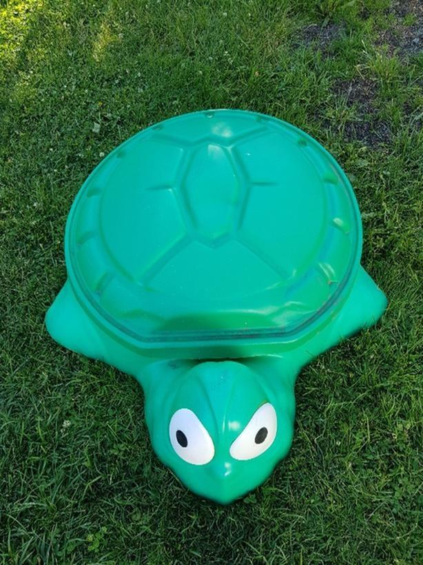 small turtle sand box