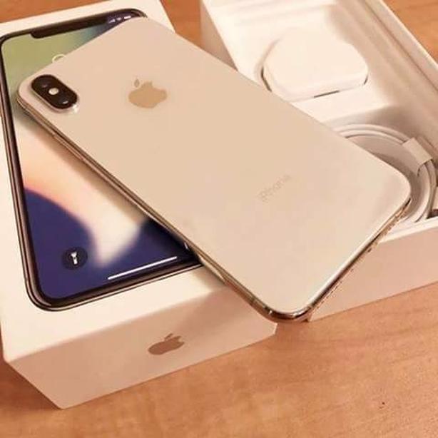 Apple iPhone X max