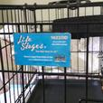 For Sale Small Training Cage