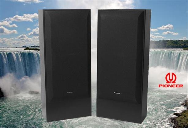 Pioneer Speakers ~ 12-inch Woofers