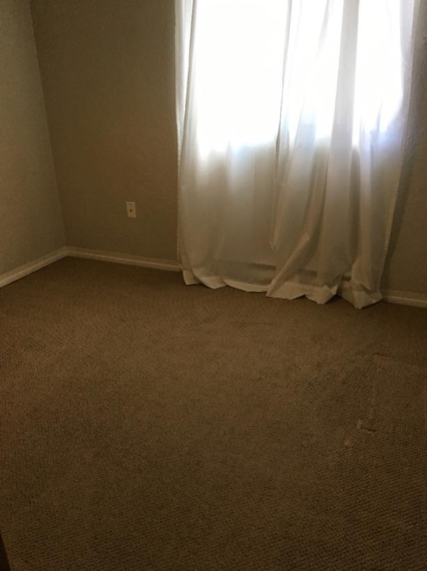 FREE: Brown carpet