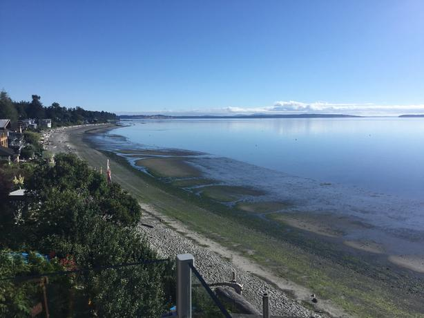 Furnished Beachfront suite on Cordova Bay beach Avail October 15