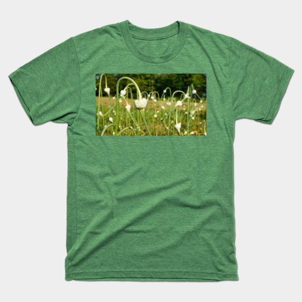 Garlic Scapes Tshirt and more! NEW DESIGNS, from $14