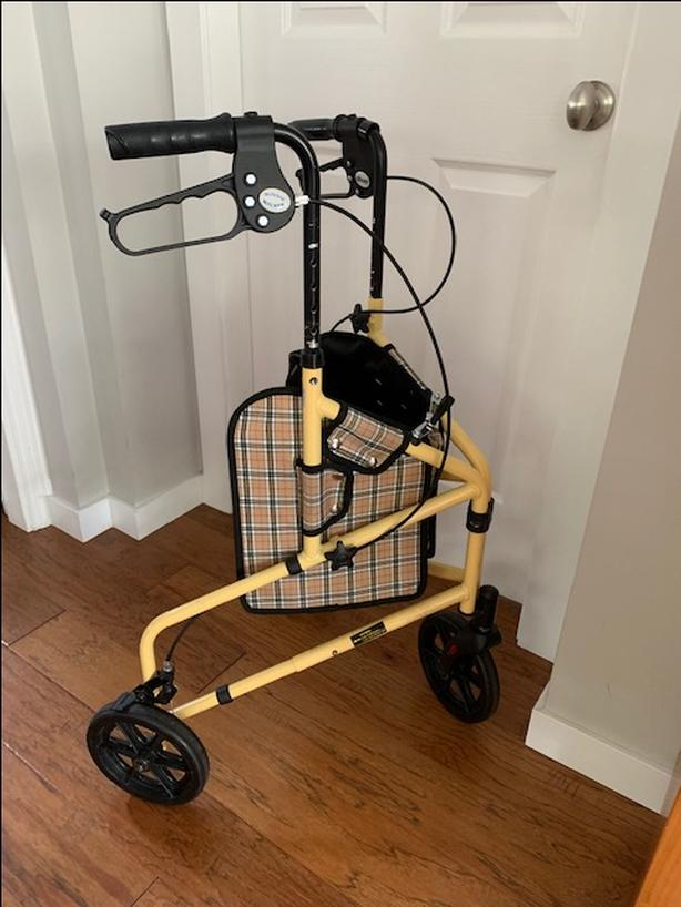 FREE:  walker, walking-aid
