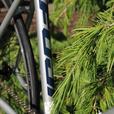 Kids/Junior Fixie/Track Bike