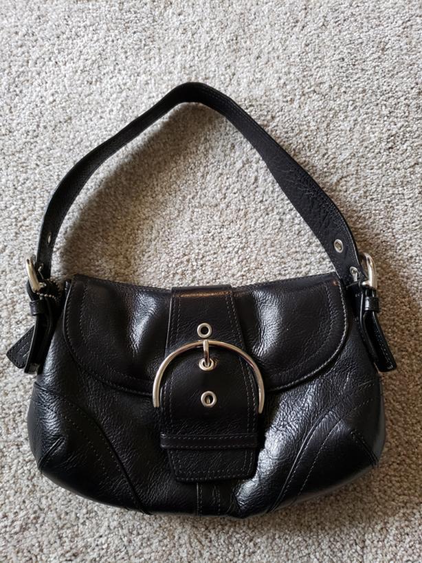 Danier Black Leather Clutch