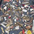 Antique fishing lure collection for sale