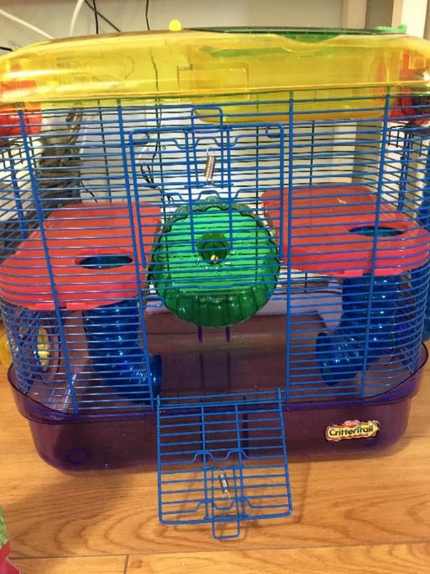 hamster cage 😀45$ Victoria City, Victoria