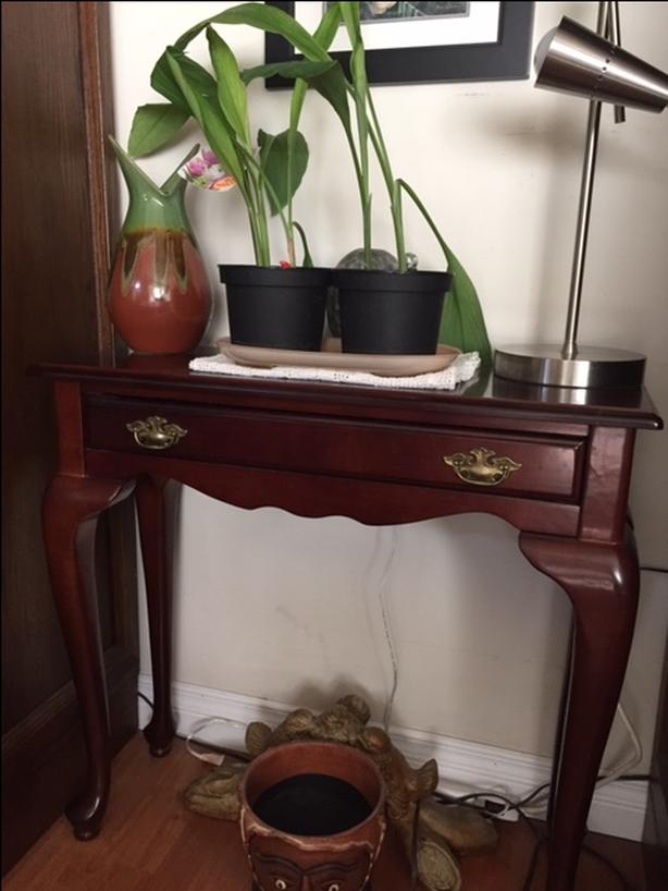 Enjoyable Sofa Table West Shore Langford Colwood Metchosin Highlands Squirreltailoven Fun Painted Chair Ideas Images Squirreltailovenorg