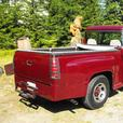 1956 chev pick-up