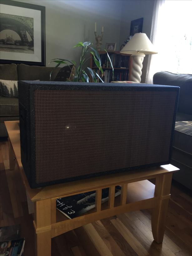 2  X 12 Guitar Cabinet