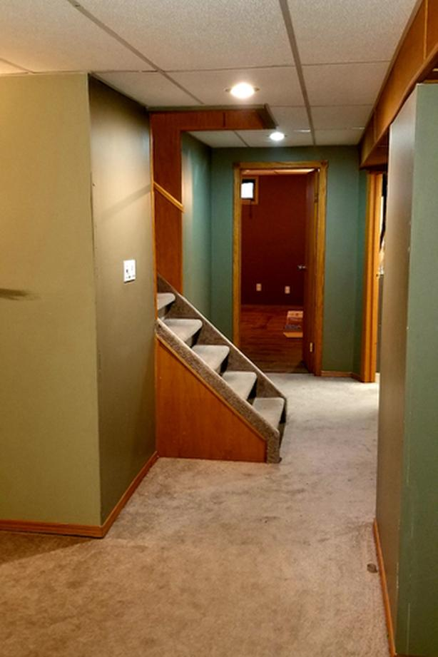 One bedroom basement suite available for Sept 1