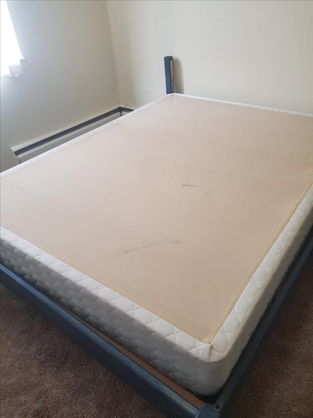 Free box spring (queen) and bed frame