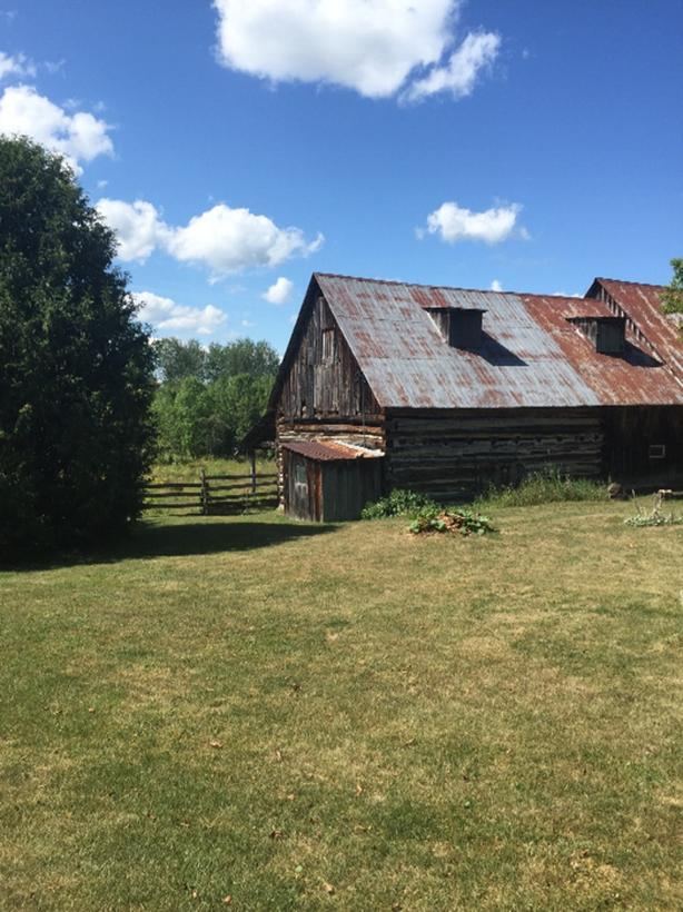 pasture and barns for two/three horses