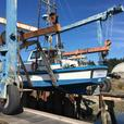 Troller For Sale - Charming Polly