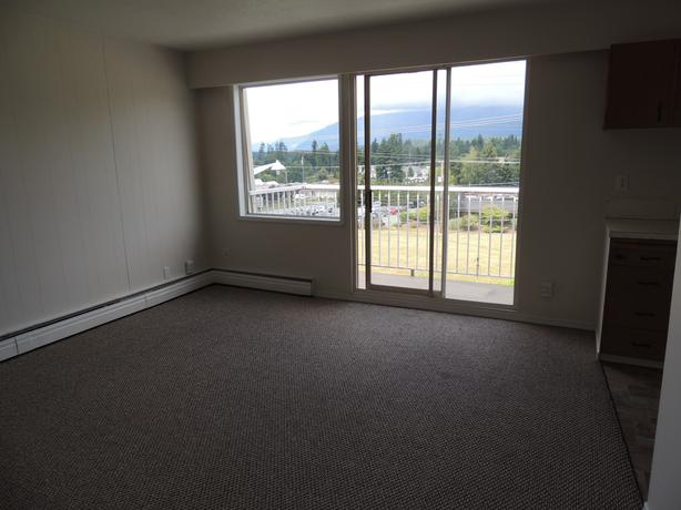 1 bedroom suite available September 1