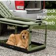 Large Collapsible Dog Crate (Good Condition)
