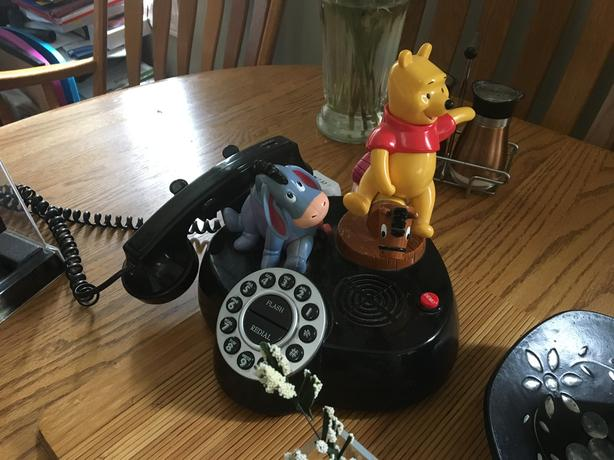Real Pooh telephone